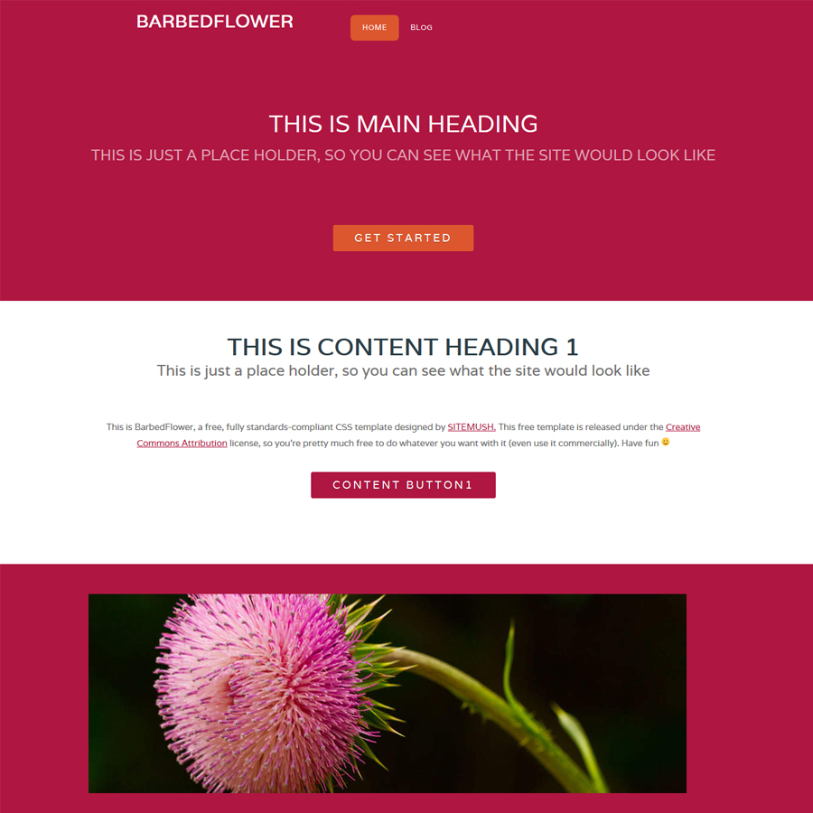 barbedflower
